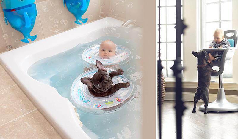 bebê-e-cachorro-fotos