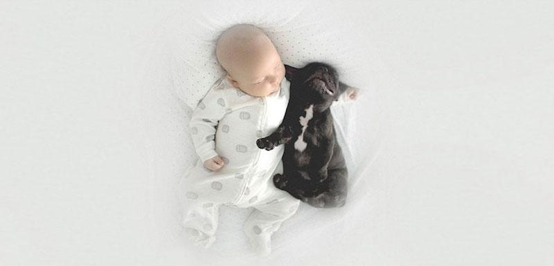 bebê-e-cachorro-lindas-fotos