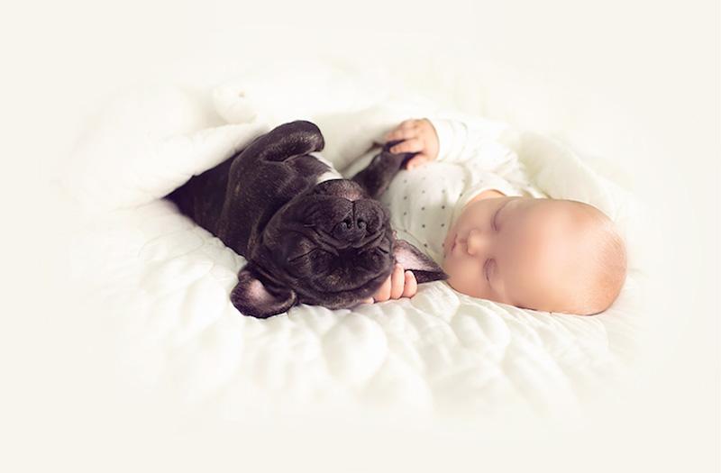 bebê-e-cachorro-soninho