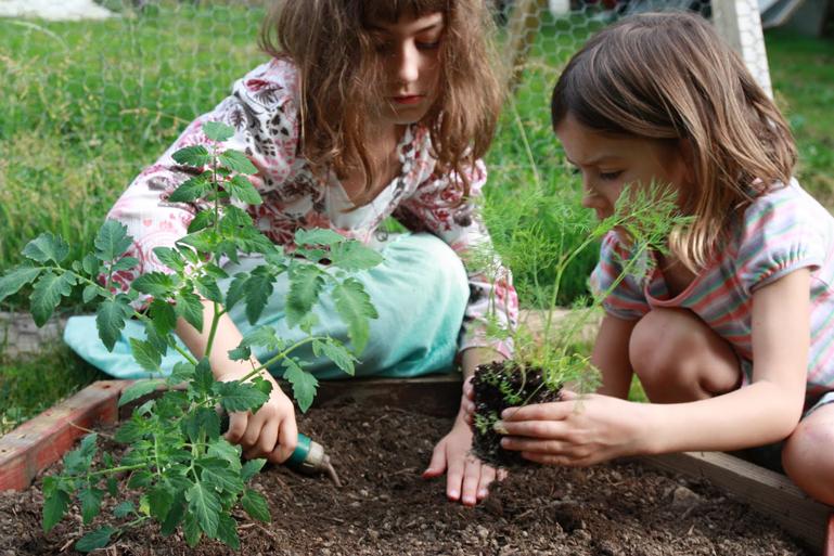 festa-de-aniversario-oficina de jardinagem- reprod internet