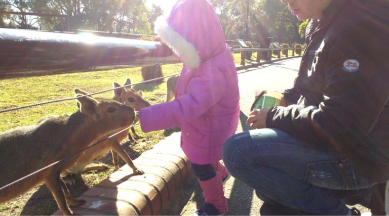 Diário de Viagem: Buenos Aires com crianças