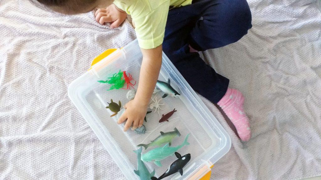 atividades-infantis-caixa-sensorial