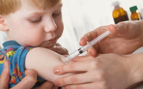 Febre Amarela: Saiba Tudo Sobre a Doença