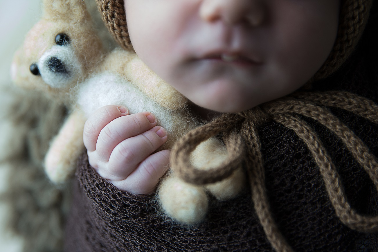 sobre ensaio newborn