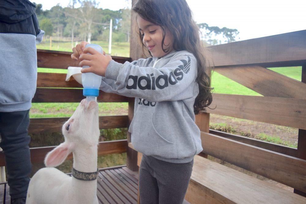 parque da ovelha em Bento Gonçalves
