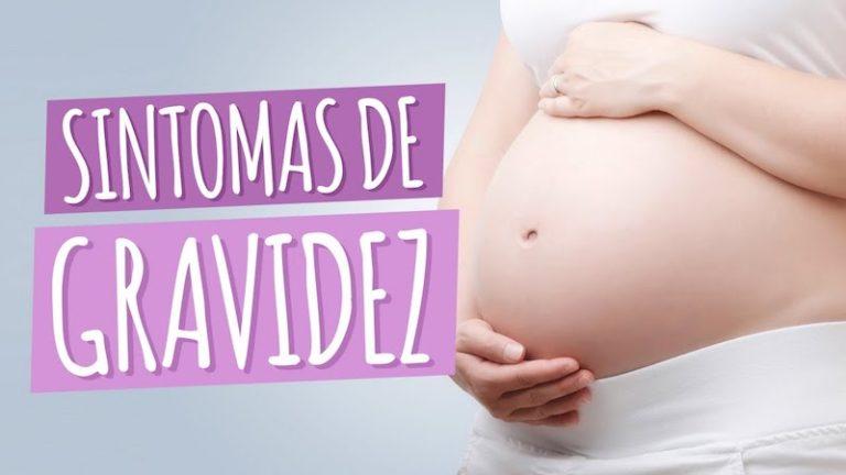 Sintomas da gravidez – quando surgem os primeiros?