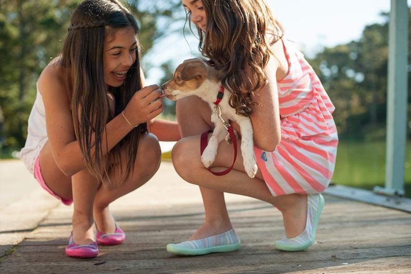 animais de estimação na infância