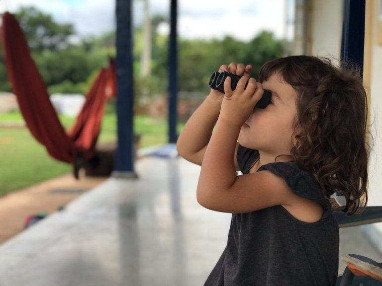 Observação de Aves – saiba os benefícios e como fazer?